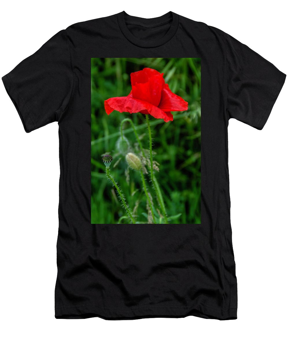 Poppies Men's T-Shirt (Athletic Fit) featuring the photograph Poppy's Course Of Life by Wolfgang Stocker
