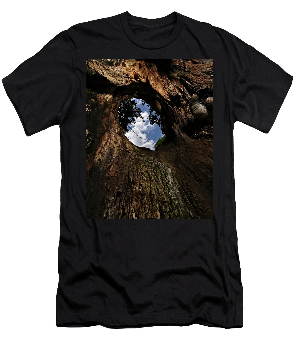 Tree Men's T-Shirt (Athletic Fit) featuring the photograph Portal by Neil Shapiro