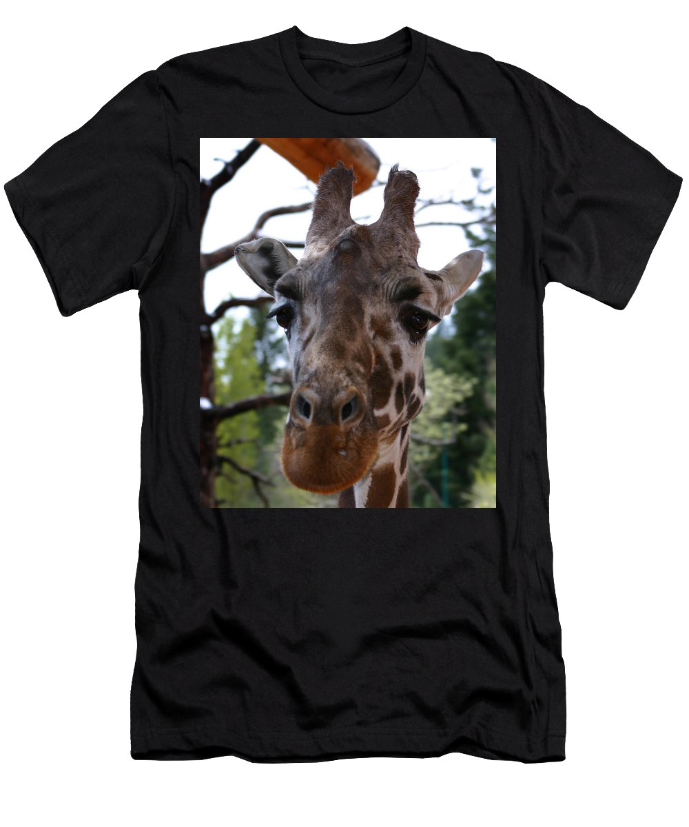 Giraffe Men's T-Shirt (Athletic Fit) featuring the photograph Portrait Of A Giraffe by Anthony Jones