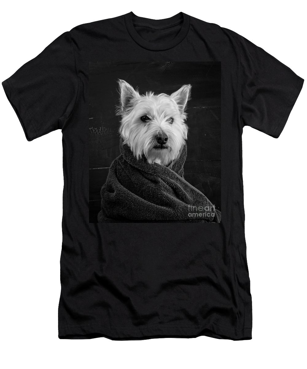 Breed Of Dog Apparel