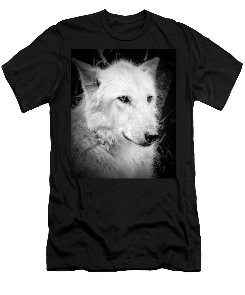 Wolf Men's T-Shirt (Athletic Fit) featuring the photograph Portrait Of A Wolf by Athena Mckinzie