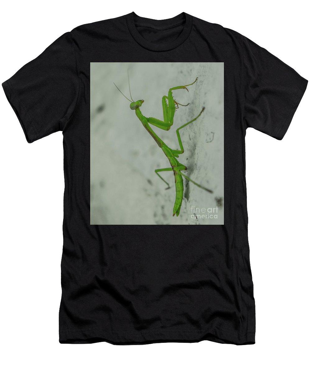 Praying Mantis Men's T-Shirt (Athletic Fit) featuring the photograph Praying Mantis by Robert Edgar
