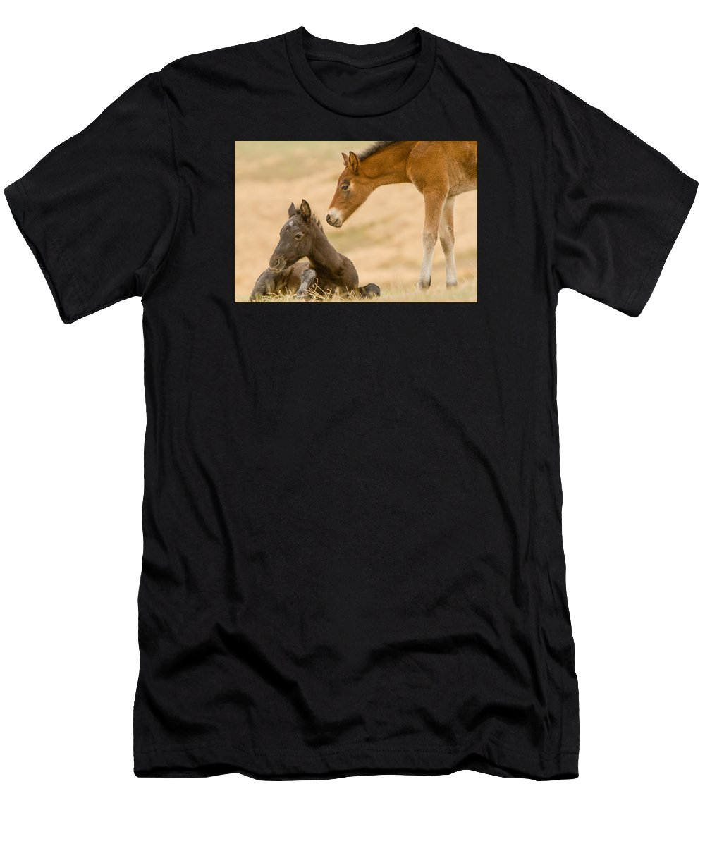 Wild Horse Men's T-Shirt (Athletic Fit) featuring the photograph Precious Babies by Kent Keller