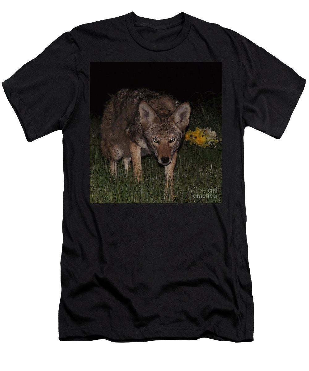 Wildlife Men's T-Shirt (Athletic Fit) featuring the photograph Precious by Traci Hallstrom