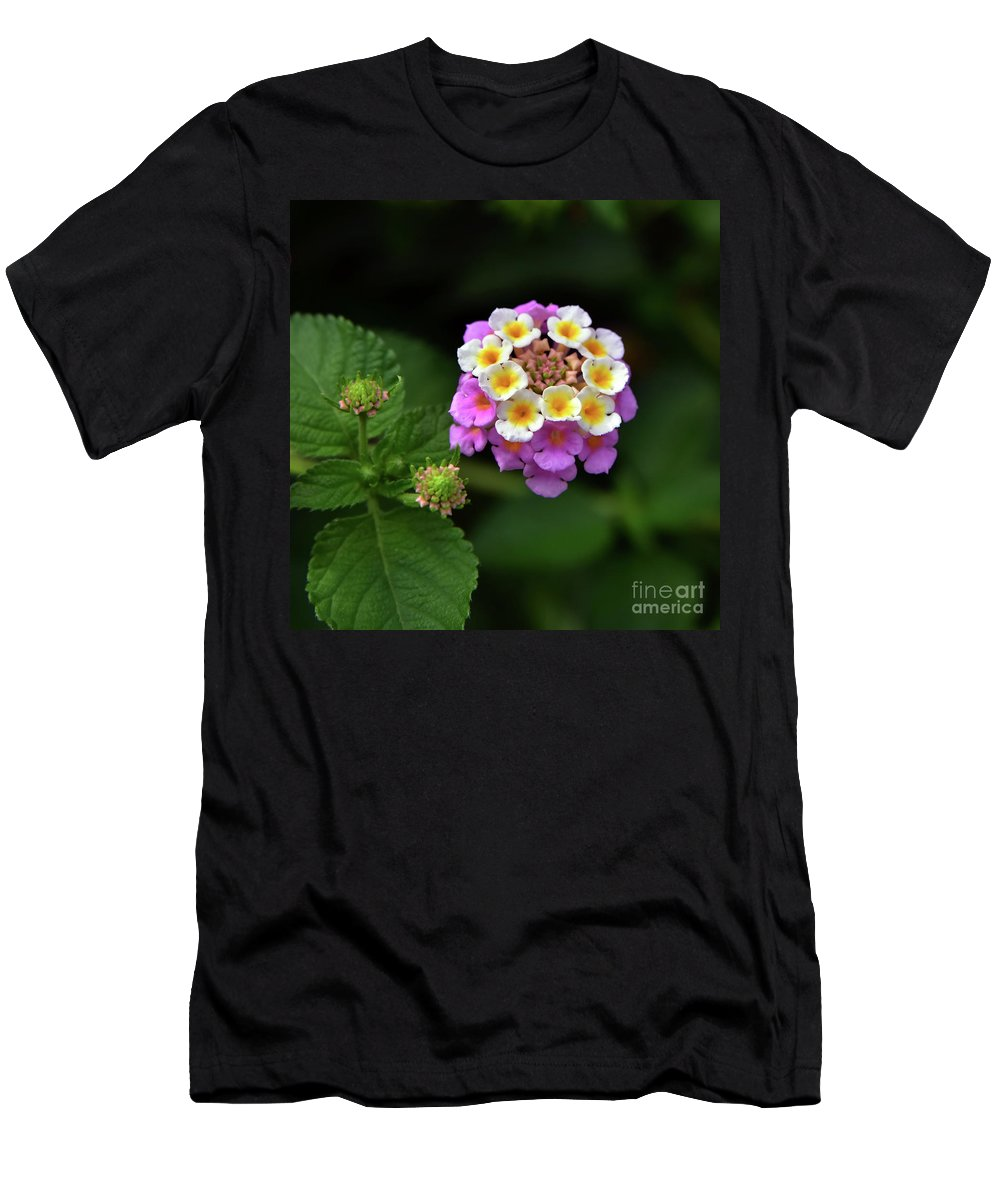 Svetlana Sewell Men's T-Shirt (Athletic Fit) featuring the photograph Pretty Flower by Svetlana Sewell