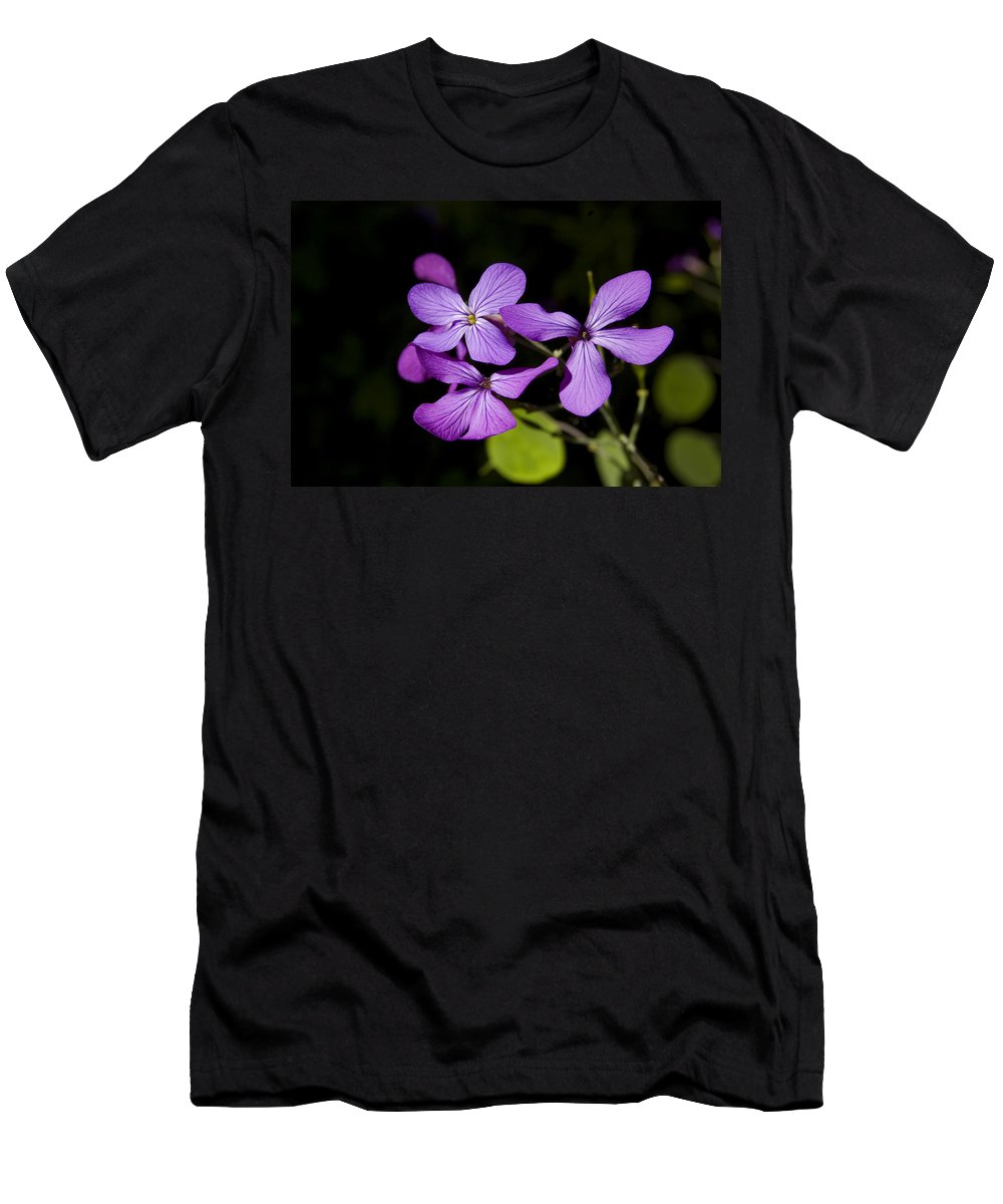 Flowers T-Shirt featuring the photograph Pretty In Purple by Gary Adkins