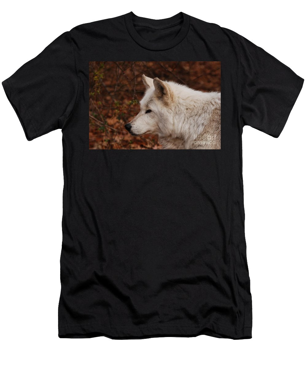Wolf Men's T-Shirt (Athletic Fit) featuring the photograph Pretty Profile by Lori Tambakis