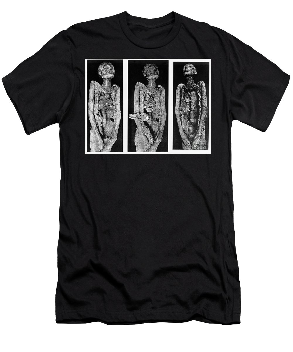 Historic Men's T-Shirt (Athletic Fit) featuring the photograph Processes Of Mummification by Wellcome Images
