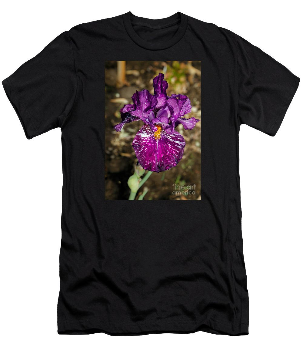 Iris Men's T-Shirt (Athletic Fit) featuring the photograph Purple Bearded Iris by Robert Bales