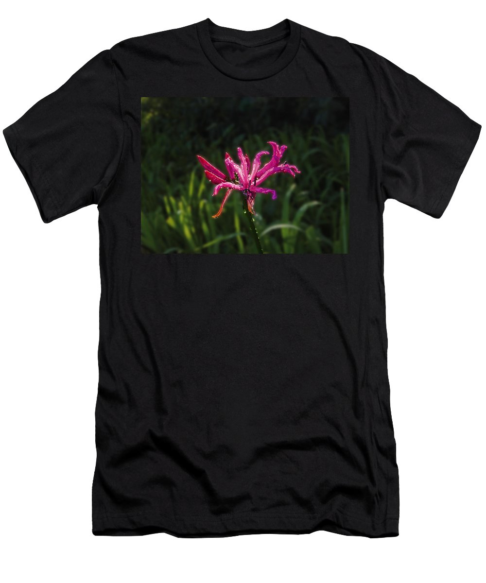 Nerine Bowdenii Men's T-Shirt (Athletic Fit) featuring the photograph Purple by Mark Blauhoefer