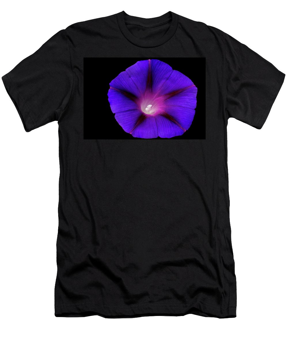 Flower Photos Men's T-Shirt (Athletic Fit) featuring the photograph Purple Glory by Maria Ollman