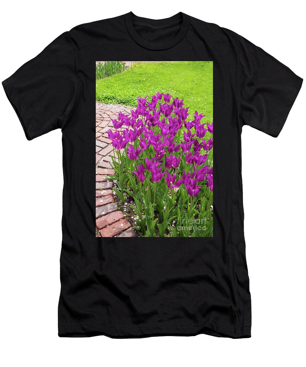 Tulip Men's T-Shirt (Athletic Fit) featuring the photograph Purple Tulips by Terri Morris