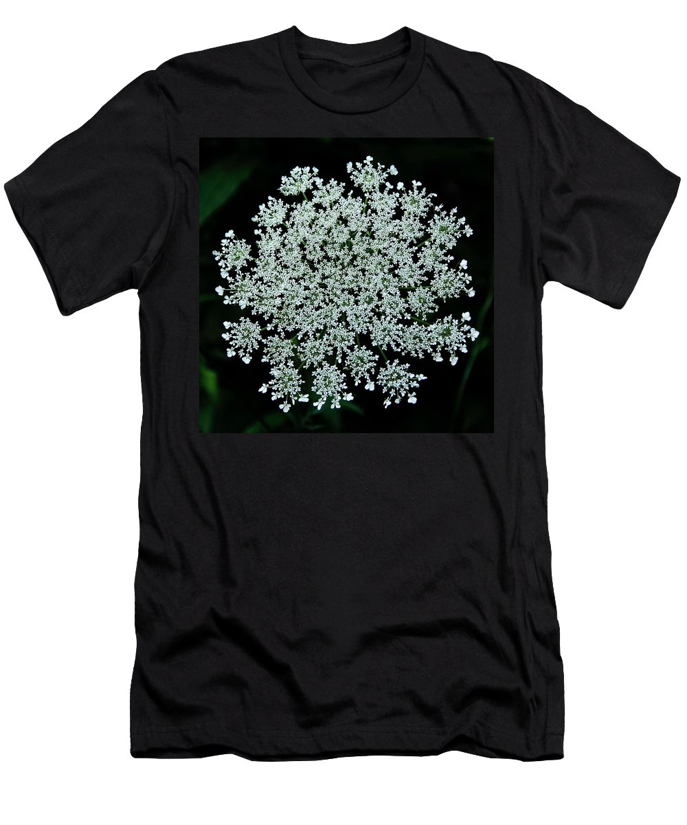 Queen Anne's Lace Men's T-Shirt (Athletic Fit) featuring the photograph Queen Anne by Allen Nice-Webb