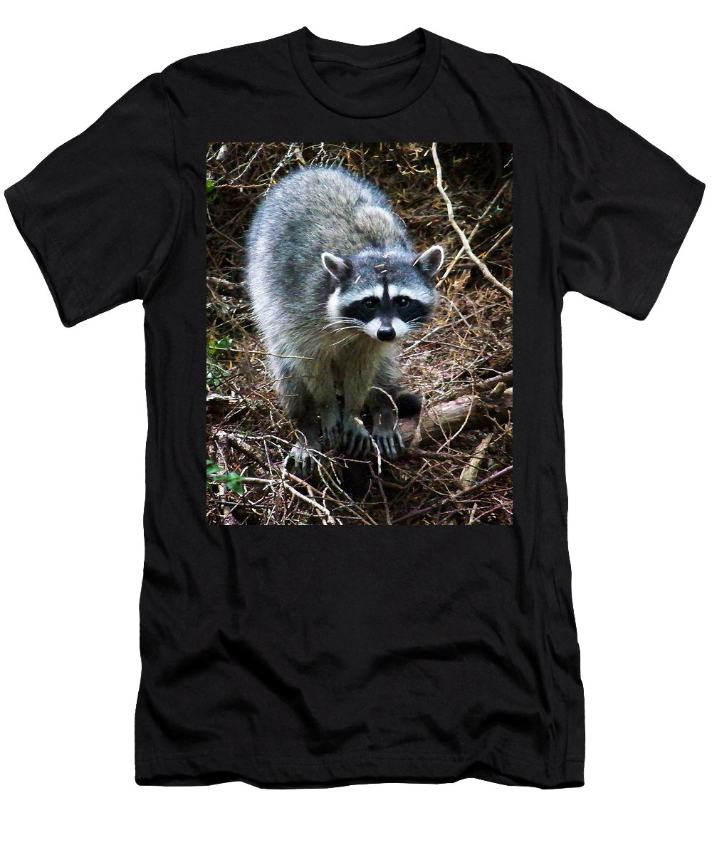 Painting Men's T-Shirt (Athletic Fit) featuring the photograph Raccoon by Anthony Jones