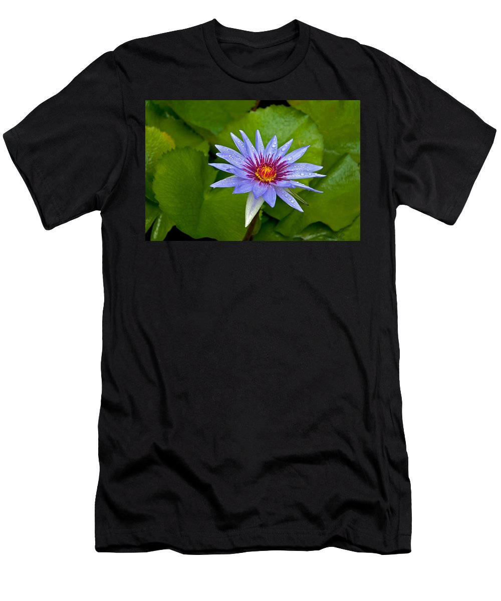 Lotus Men's T-Shirt (Athletic Fit) featuring the photograph Rain Drenched Blue Lotus In Grand Cayman by Marie Hicks