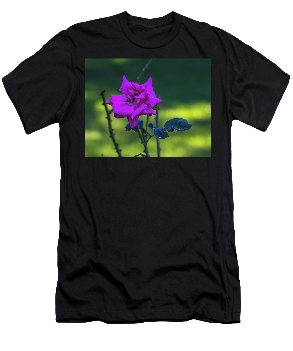 Rose Men's T-Shirt (Athletic Fit) featuring the photograph Rain Wet Rose 2 by Brent Bordelon