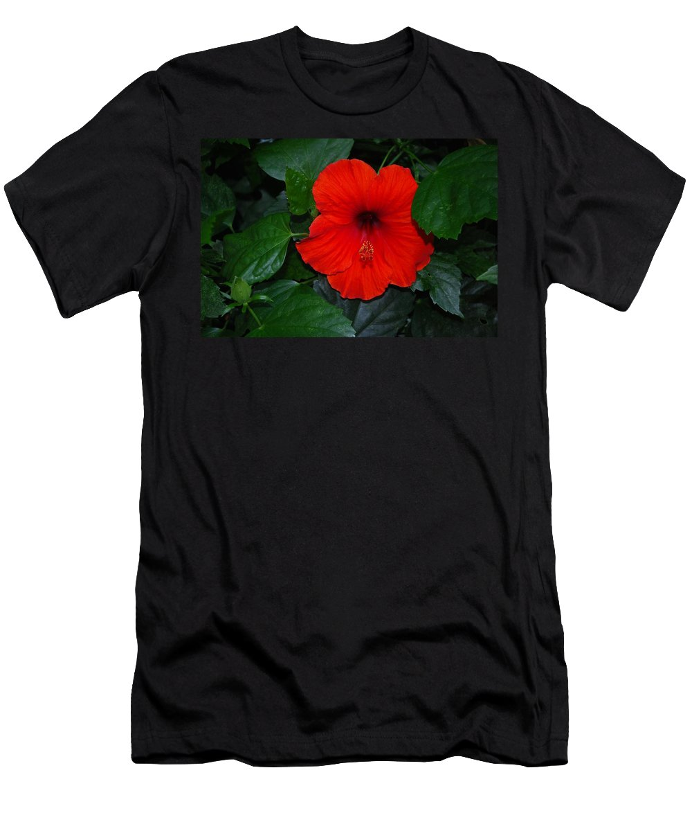 Flower Men's T-Shirt (Athletic Fit) featuring the photograph Rainforest Beauty by Gary Wonning