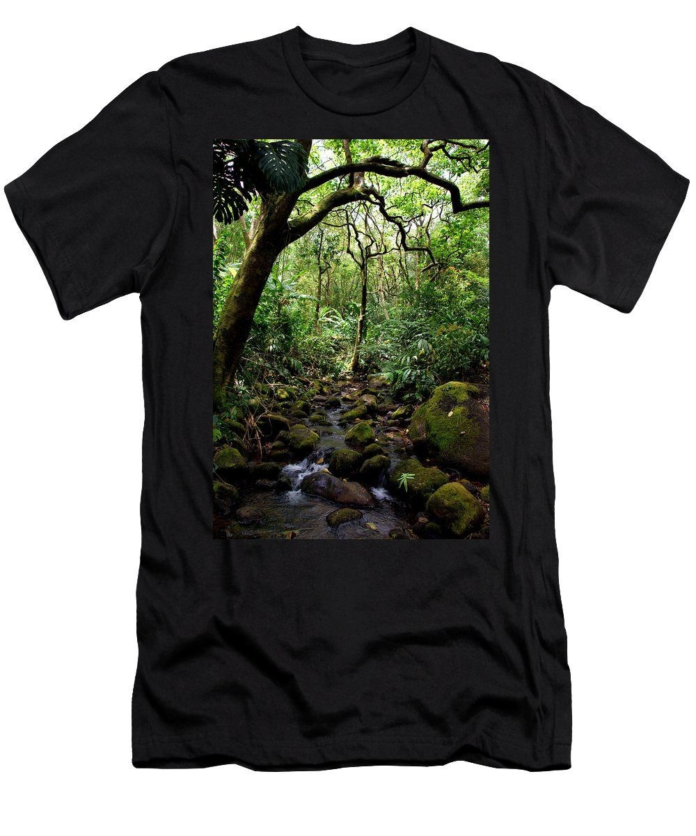 Manoa Men's T-Shirt (Athletic Fit) featuring the photograph Rainforest Stream by Kevin Smith
