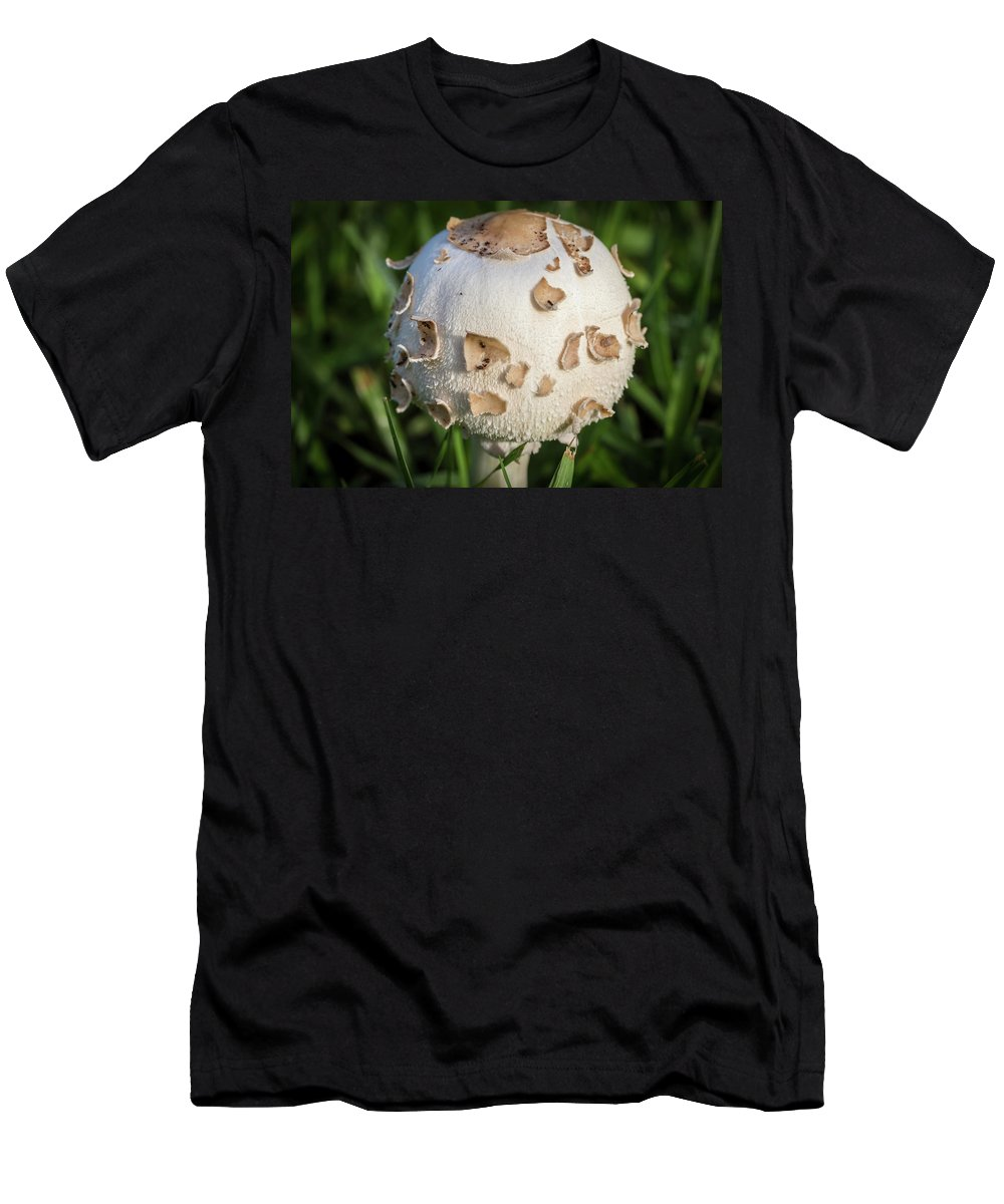 Pioneer Park Men's T-Shirt (Athletic Fit) featuring the photograph Rain's Child 2 by Richard Goldman