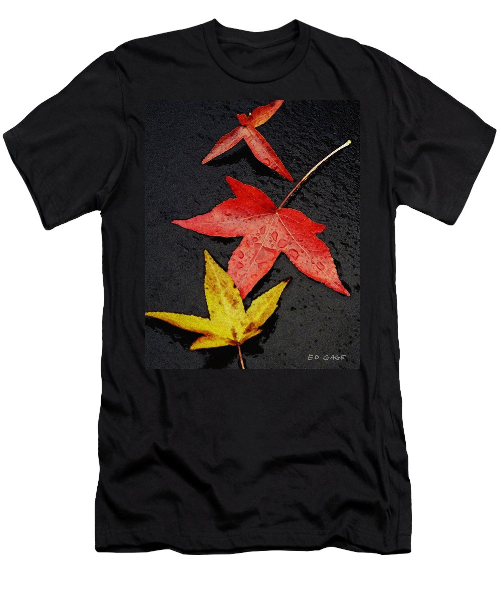 Autumn Men's T-Shirt (Athletic Fit) featuring the photograph Rainy Day Trio by Ed A Gage