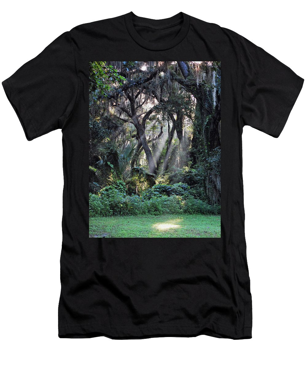 Rays Of Sunlight Men's T-Shirt (Athletic Fit) featuring the photograph Rays Of Sunlight by Robert Meanor