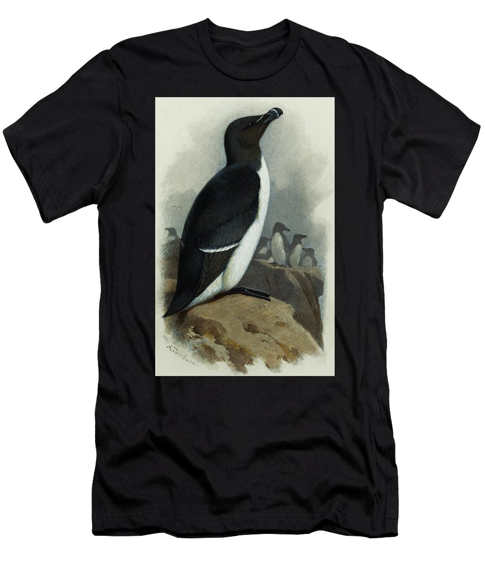Razorbill T-Shirts
