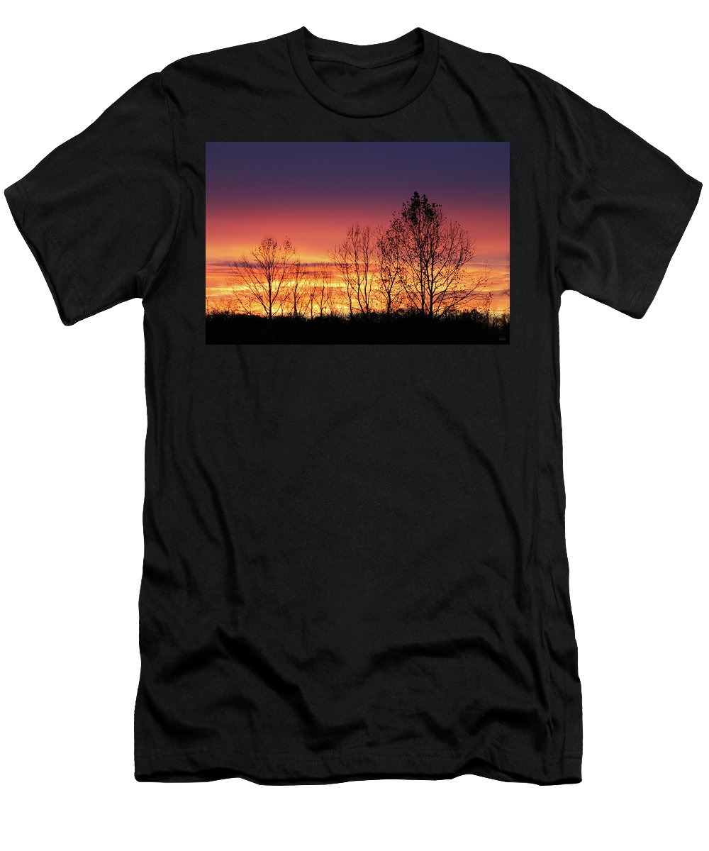 Brad Brailsford Men's T-Shirt (Athletic Fit) featuring the photograph Reaching West by Brad Brailsford