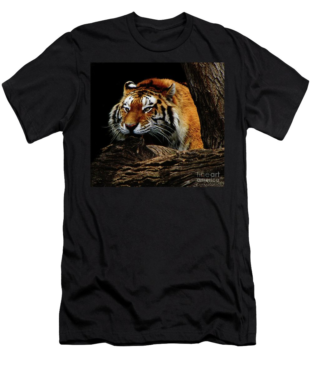 Tiger Men's T-Shirt (Athletic Fit) featuring the photograph Ready Or Not by September Stone