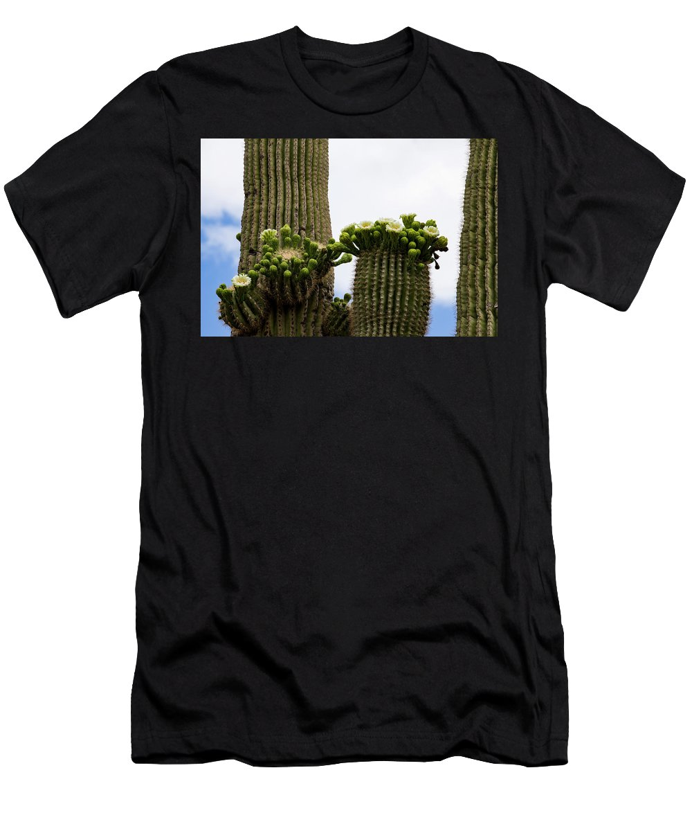 Arizona Men's T-Shirt (Athletic Fit) featuring the photograph Ready To Open by Cathy Franklin