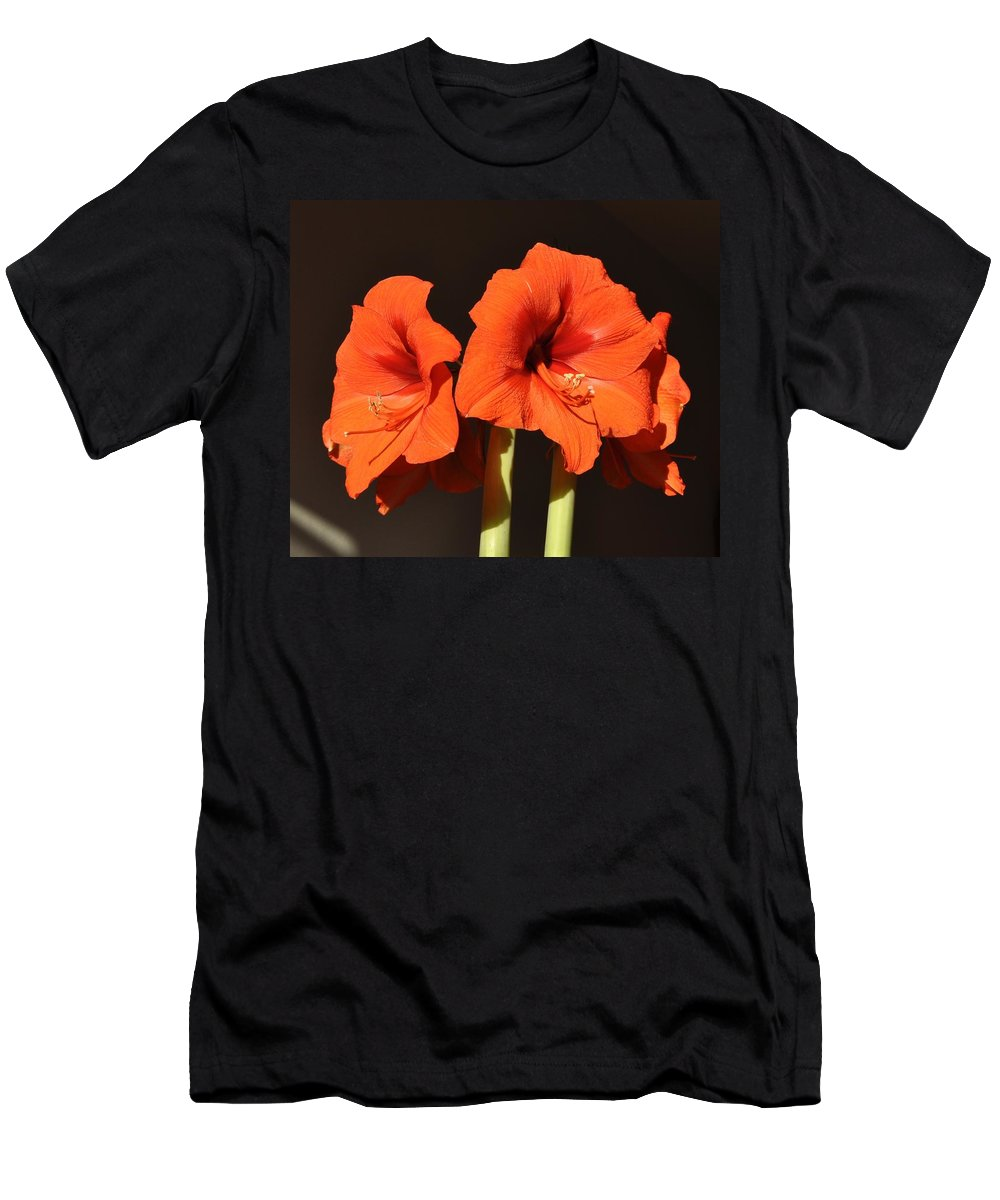 Amaryllis Flower Men's T-Shirt (Athletic Fit) featuring the photograph Red Amaryllis by Georgeta Blanaru