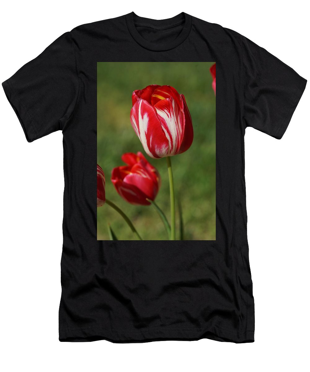 Red Men's T-Shirt (Athletic Fit) featuring the photograph Red And White by Carrie Goeringer