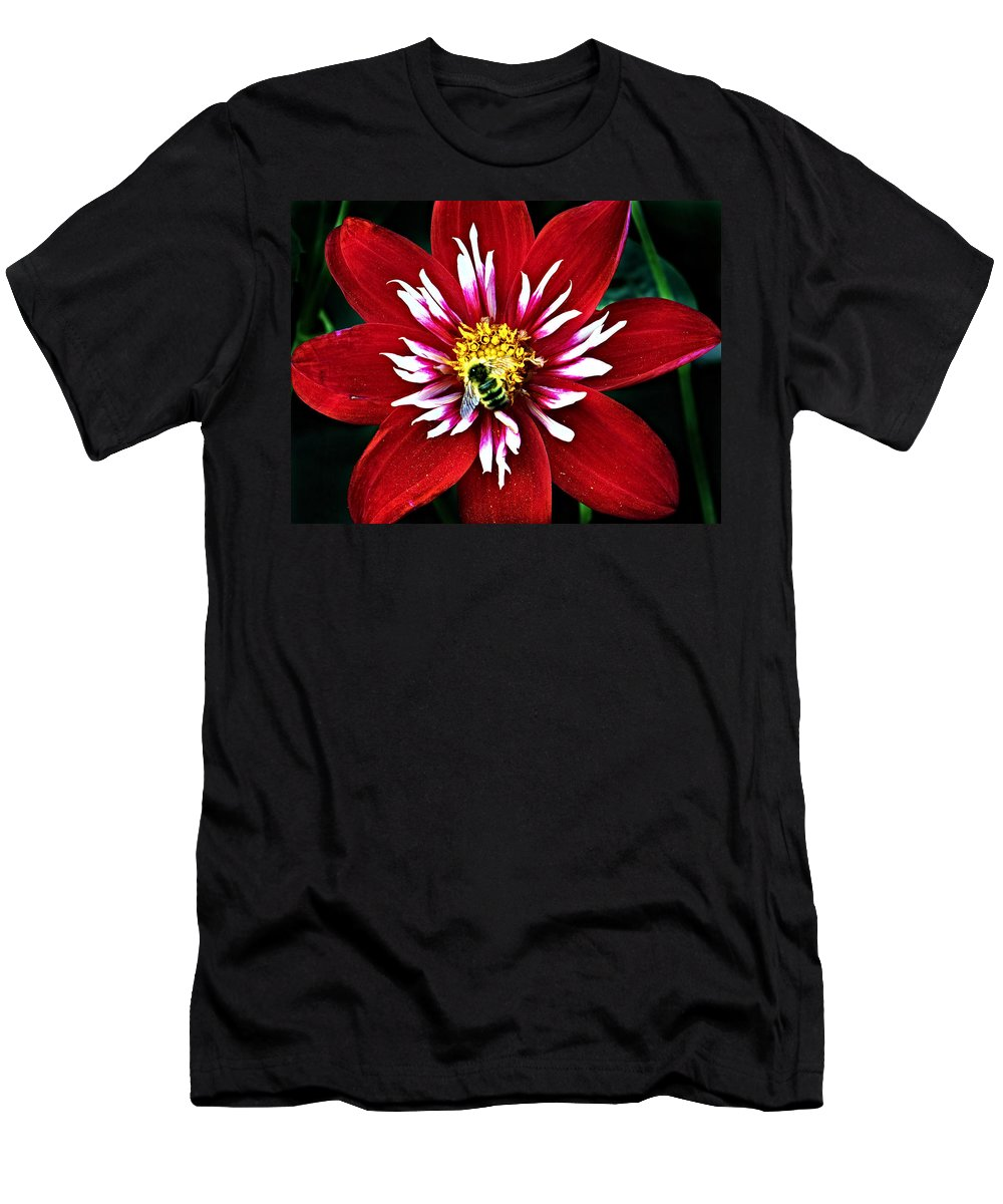 Flower Men's T-Shirt (Athletic Fit) featuring the photograph Red And White Flower With Bee by Anthony Jones