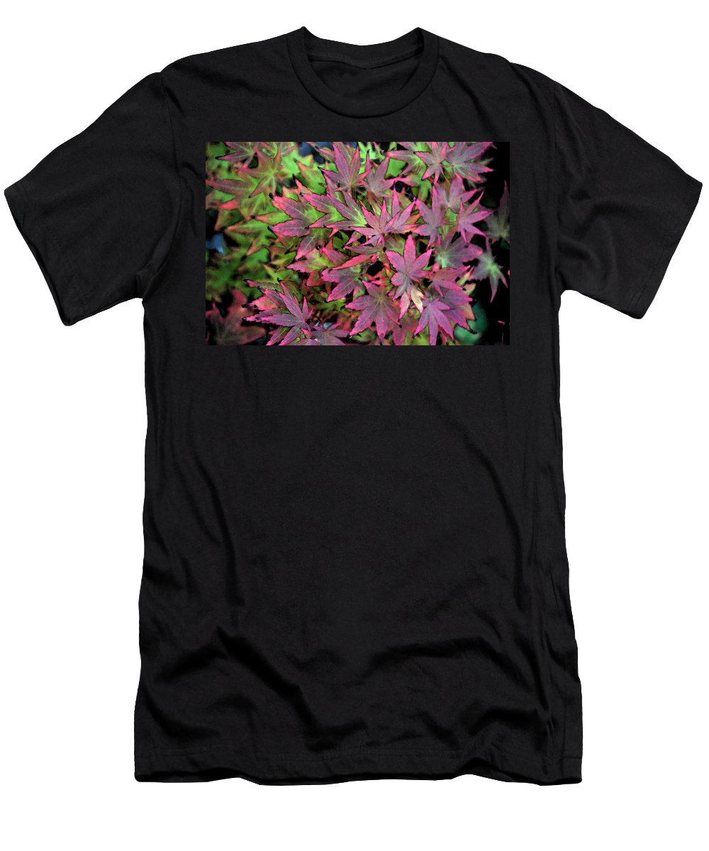 Garden Men's T-Shirt (Athletic Fit) featuring the photograph Red Bark Maple Leaves by Carol Eliassen