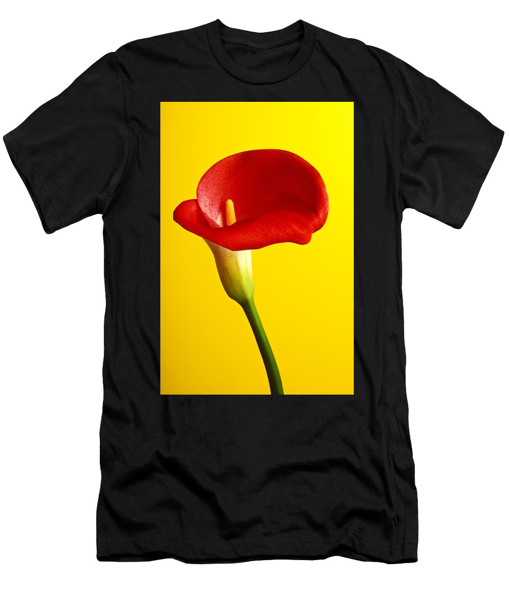 Red Yellow Flower Flowers Calla Lily Lilies Stem Yellow Graphic Design Bright Color Colors Colour Colours Colorful Distinctive Lilum Lilys Arum Bulb Close Up Detail Details Beauty Nature Beautiful Blossom Delicate Fragile Growing Vertical Plant Plants Concepts Decoration Bloom Blooming Botanical Floral Horticulture Floriculture Blossoming Flowering Petal Serenity Stamen Majestic Grow Unusual Men's T-Shirt (Athletic Fit) featuring the photograph Red Calla Lilly by Garry Gay