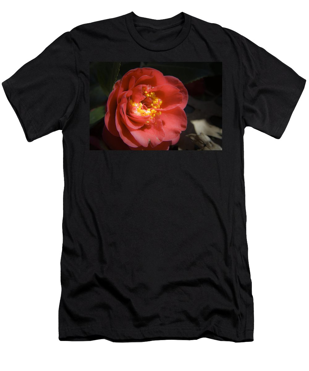 Camellia Men's T-Shirt (Athletic Fit) featuring the photograph Red Camellia Bloom by Teresa Mucha