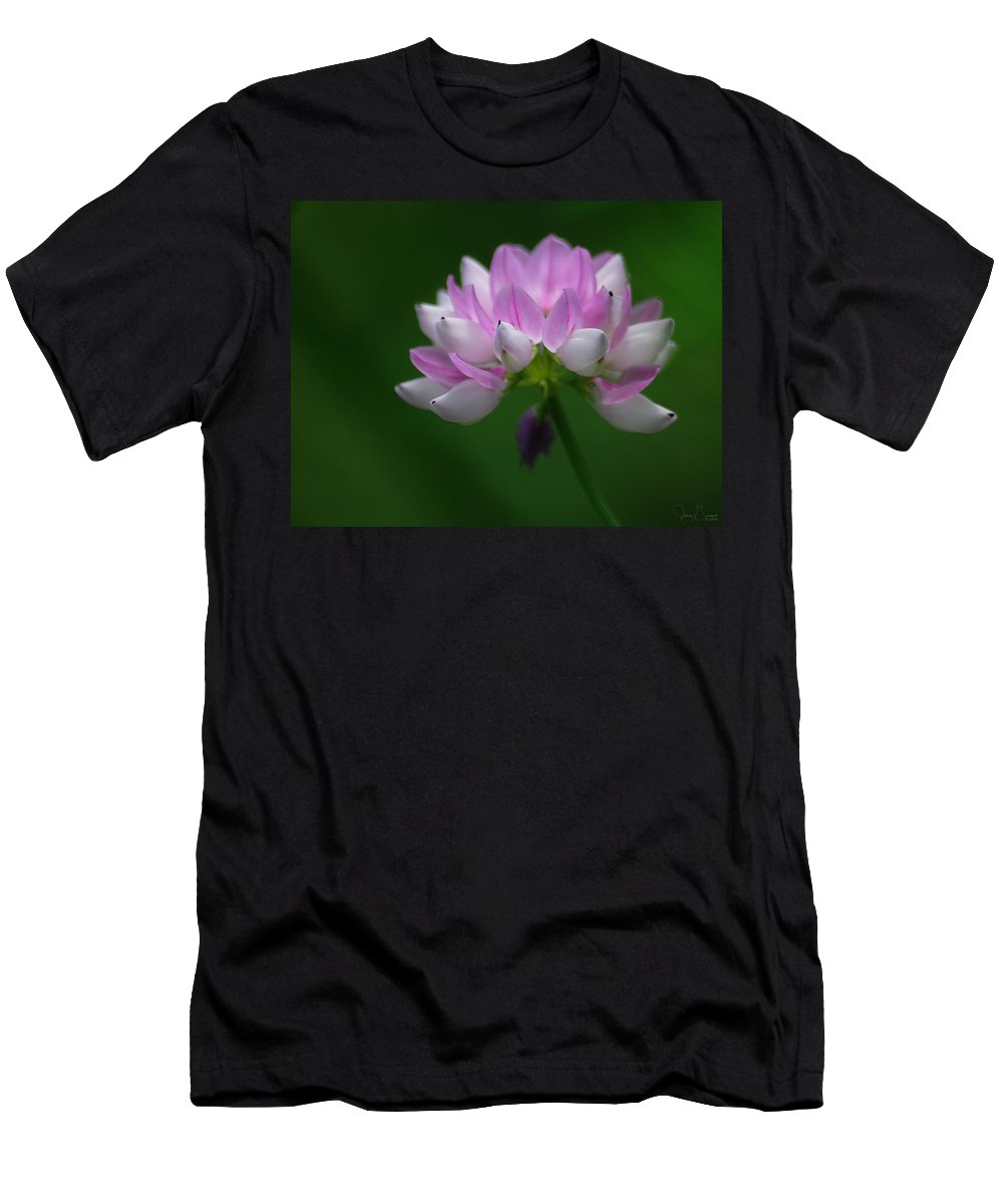 Jenny Gandert Men's T-Shirt (Athletic Fit) featuring the photograph Red Clover by Jenny Gandert