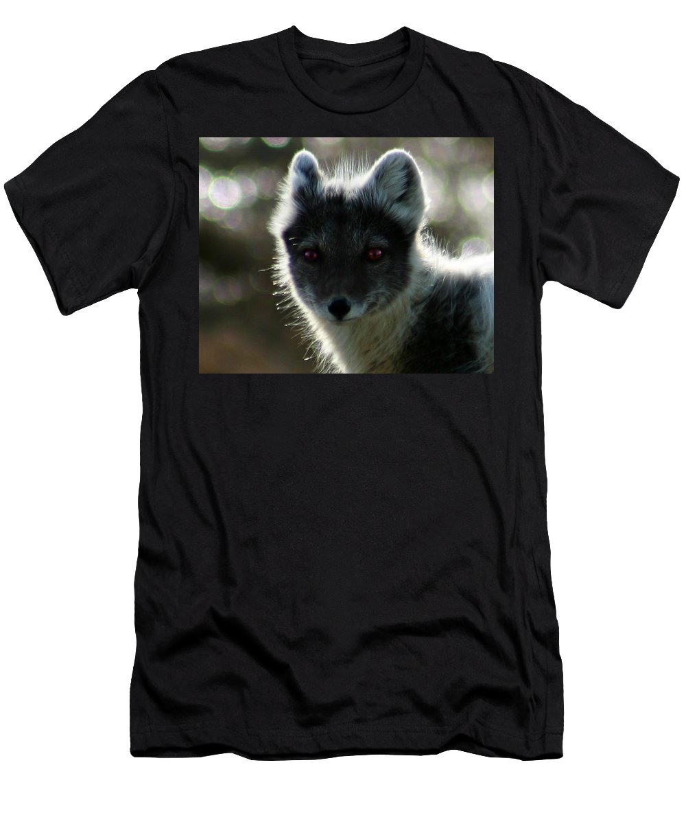 Arctic Fox Men's T-Shirt (Athletic Fit) featuring the photograph Red Eyes by Anthony Jones