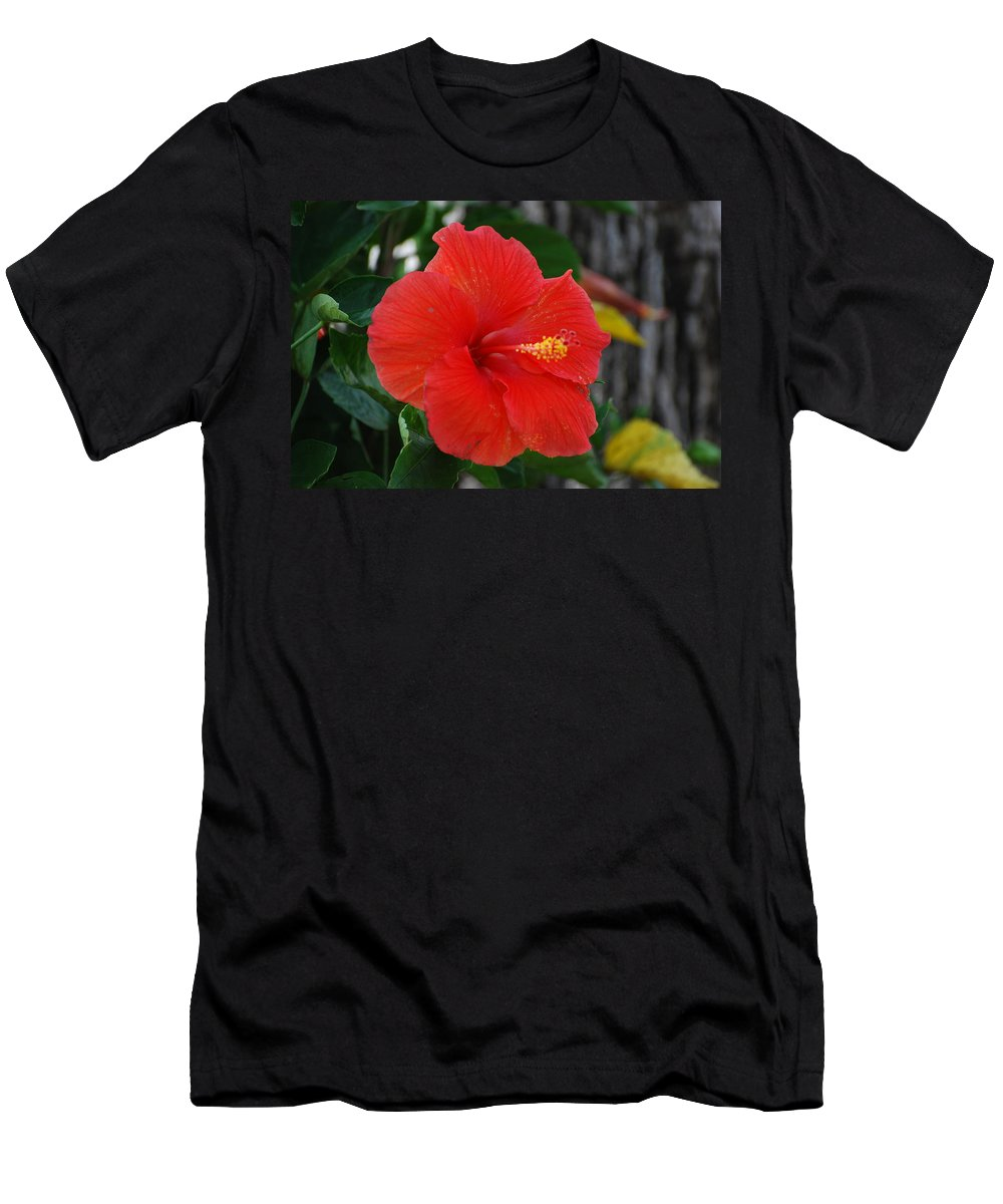 Flowers Men's T-Shirt (Athletic Fit) featuring the photograph Red Flower by Rob Hans