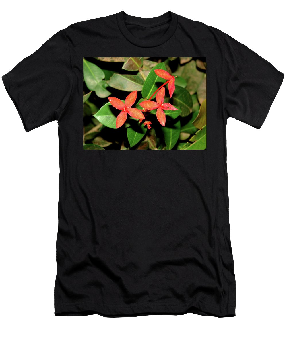 Port Gentil Men's T-Shirt (Athletic Fit) featuring the photograph Red Flowers by Brett Winn