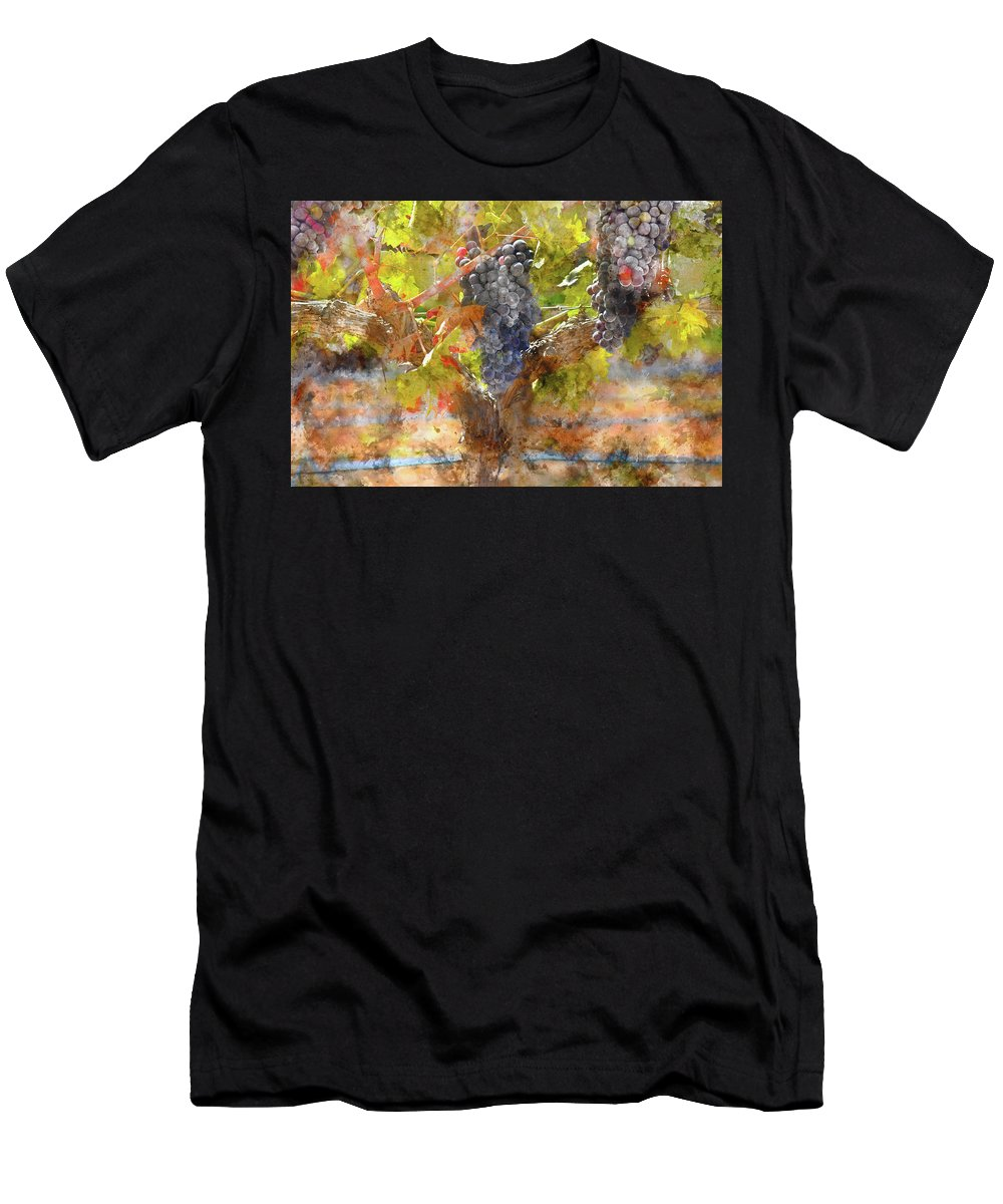 Red Wine Men's T-Shirt (Athletic Fit) featuring the photograph Red Grapes On The Vine During The Fall Season by Brandon Bourdages