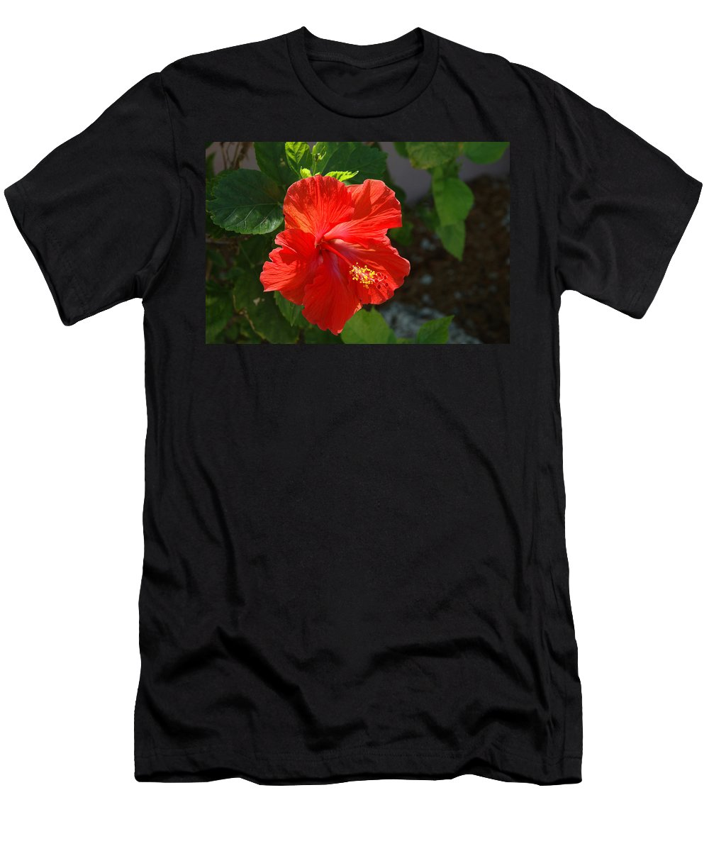 Hibiscus Men's T-Shirt (Athletic Fit) featuring the photograph Red Hibiscus II by Susanne Van Hulst