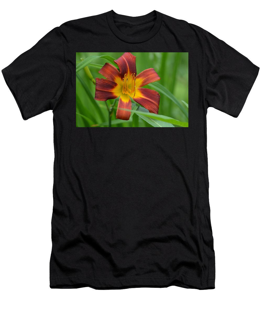 Daylily Men's T-Shirt (Athletic Fit) featuring the photograph Red Magic by Shelley Smith