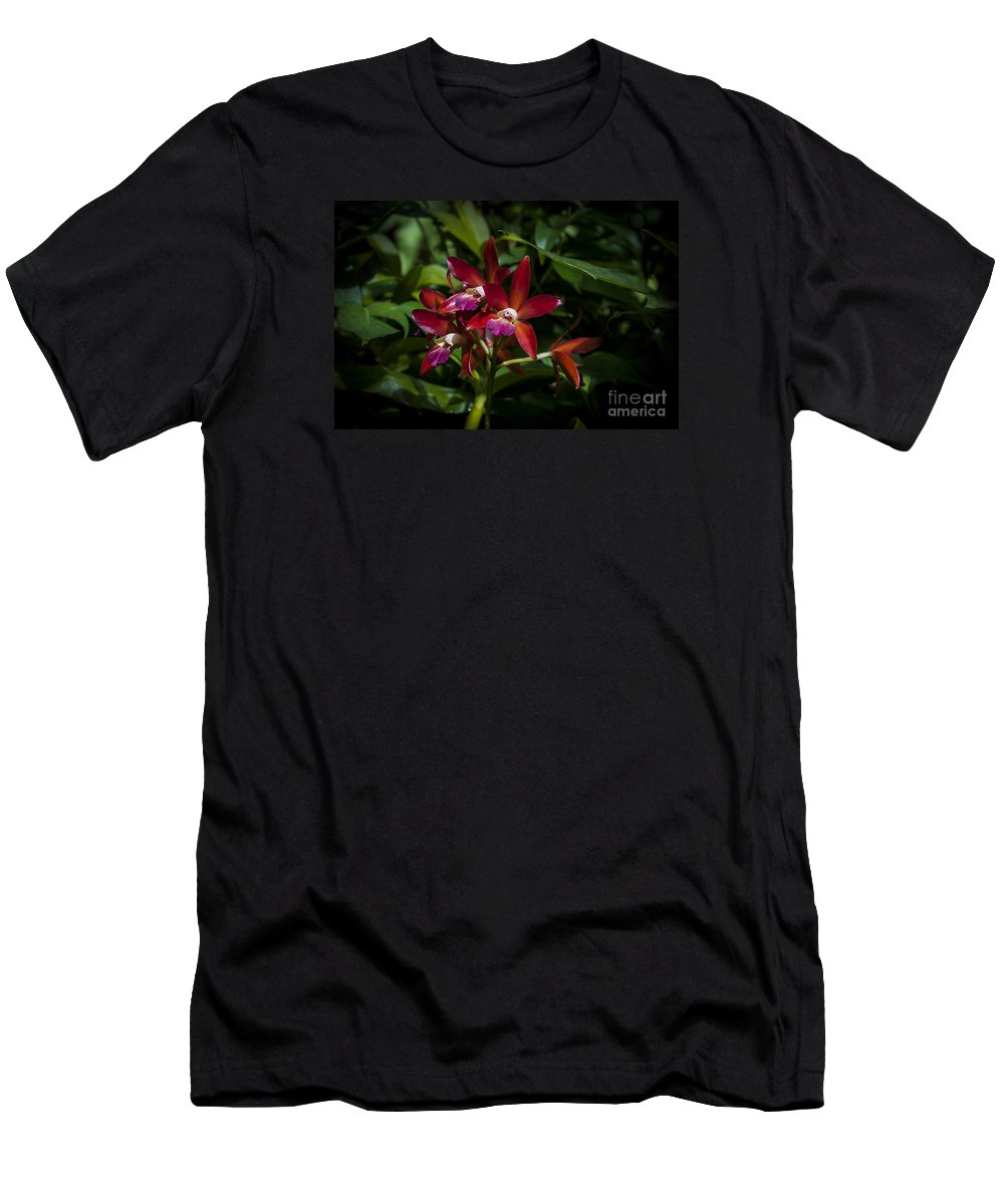 Flower Men's T-Shirt (Athletic Fit) featuring the photograph Red Orchids by Rich Governali