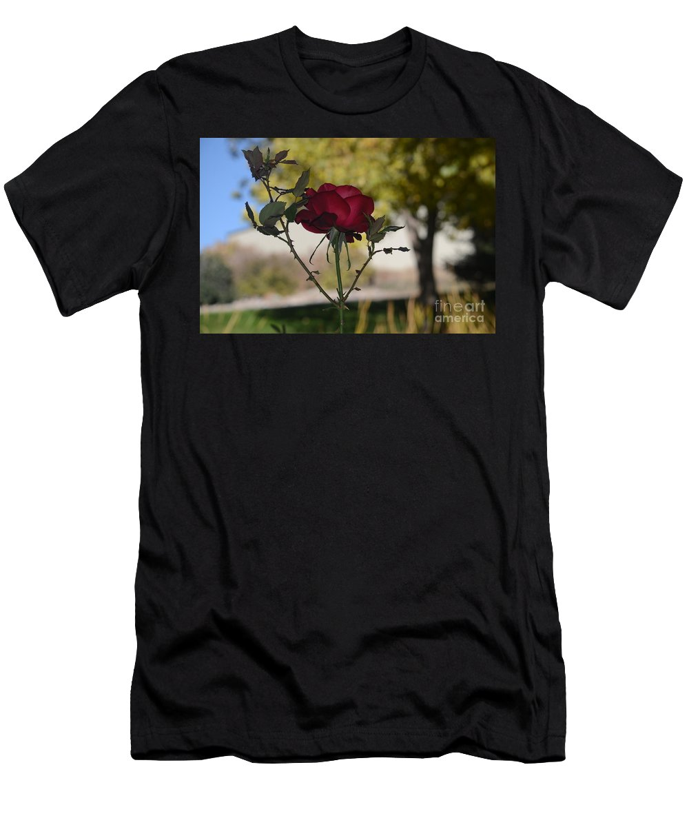 Rose Men's T-Shirt (Athletic Fit) featuring the photograph Red Rose 1 by James Stewart