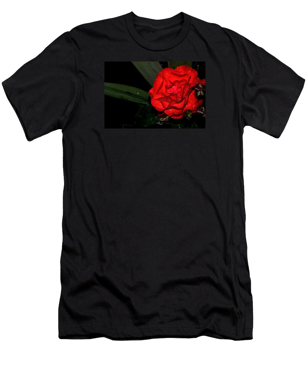 Macro Men's T-Shirt (Athletic Fit) featuring the photograph Red Rose by Luminita Zamfir