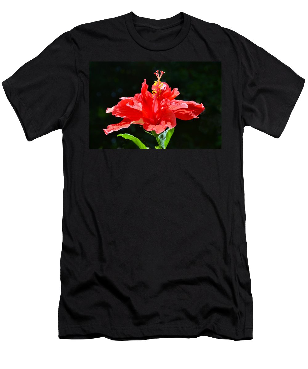 Hibiscus Men's T-Shirt (Athletic Fit) featuring the photograph Red by Sandi OReilly