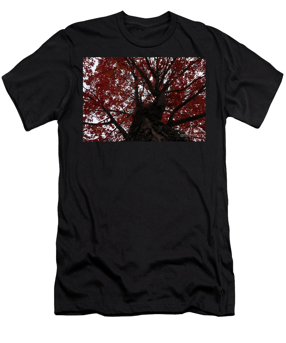Fall Men's T-Shirt (Athletic Fit) featuring the photograph Red Tree by David Lee Thompson
