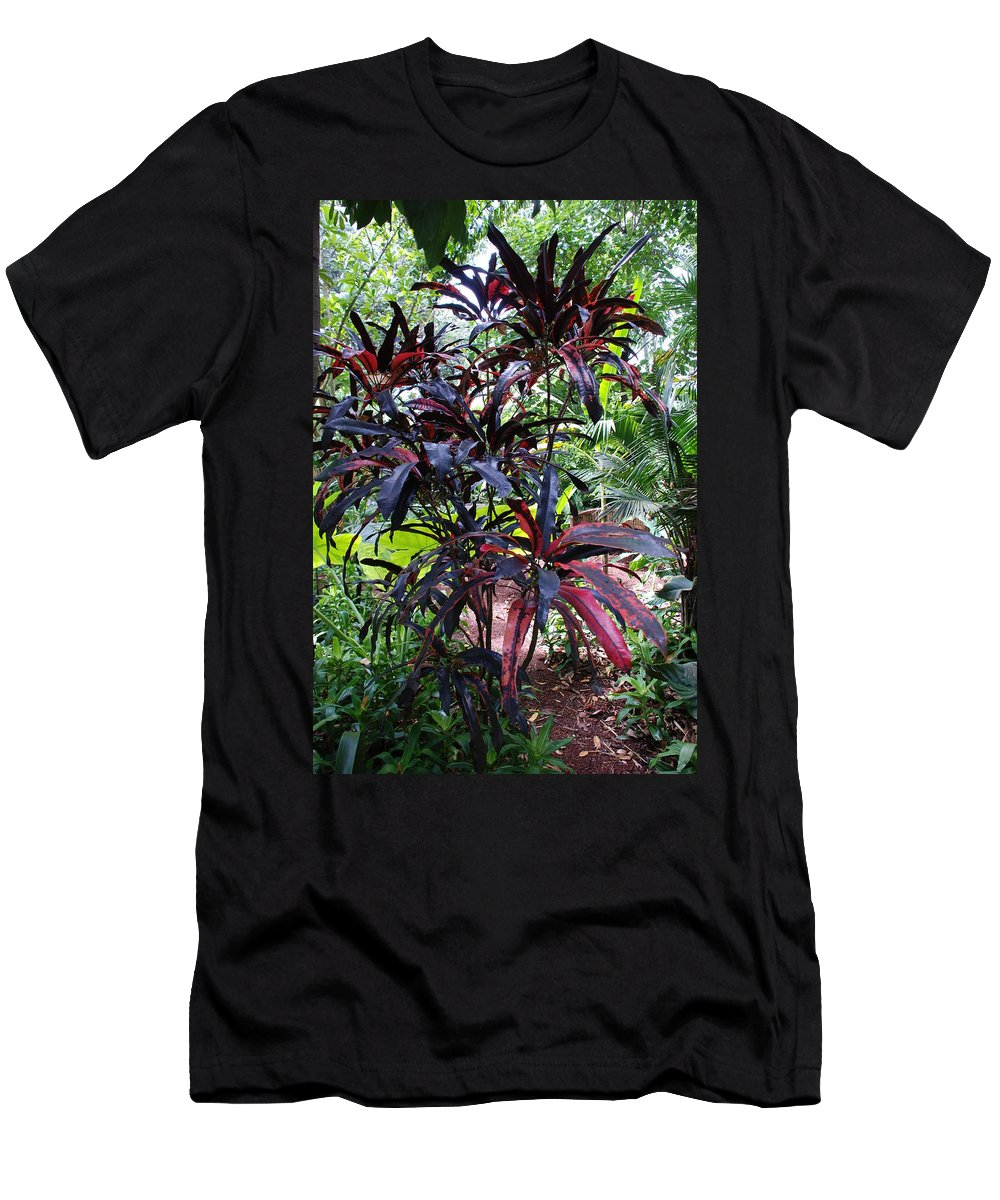 Red Men's T-Shirt (Athletic Fit) featuring the photograph Red Trees by Rob Hans