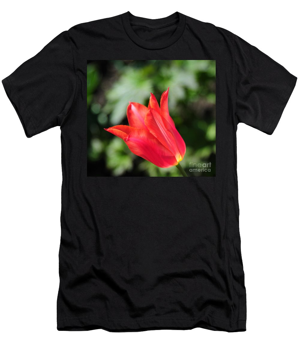 Red Men's T-Shirt (Athletic Fit) featuring the photograph Red Tulip by Joe Ng