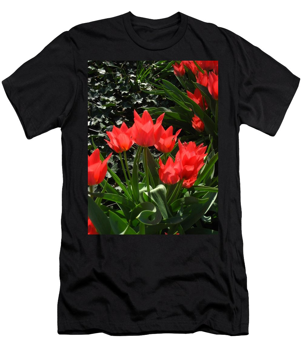 Flowers Men's T-Shirt (Athletic Fit) featuring the photograph Red Tulips by Sherry Oliver